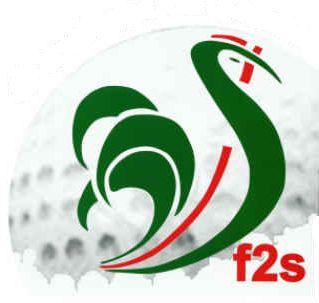 Fédération Sportive de Swin-Golf